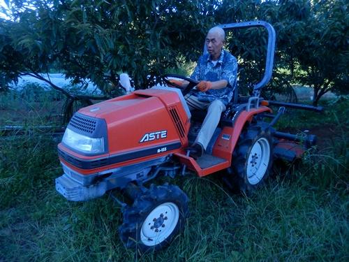2014.10.3 トラクターで耕作 008 (5)