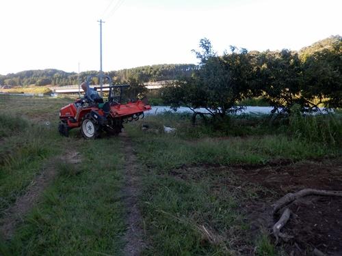 2014.10.3 トラクターで耕作 008 (6)