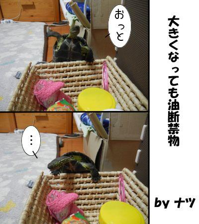 20141011-02.jpg
