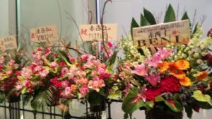 玉アリ お花