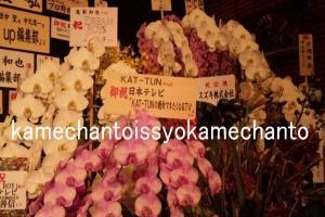 お花(21日・カツマネ)