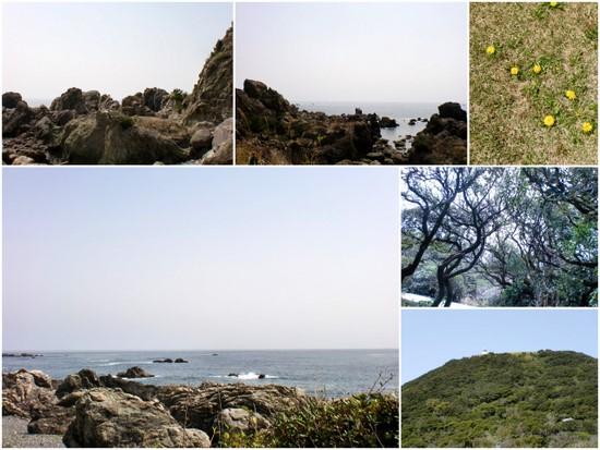 2013-03-162.jpg