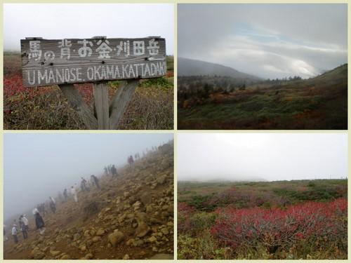 2013-10-091.jpg