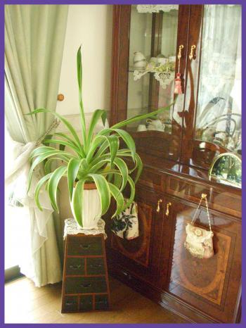 2011-08-017_convert_20110801182919.jpg