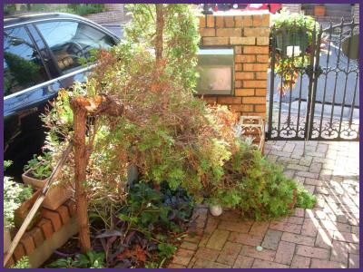 2011-09-23_convert_20110923220314.jpg