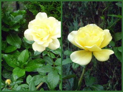 2011-10-0218_convert_20111002211135.jpg