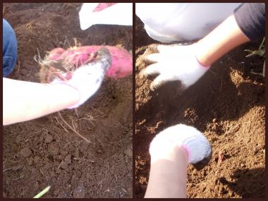 2011-10-029_convert_20111002205526.jpg