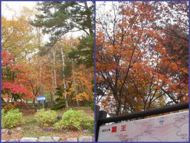 2011-10-274_convert_20111027184843.jpg
