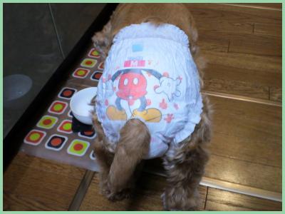 2011-12-2625_convert_20111227001342.jpg