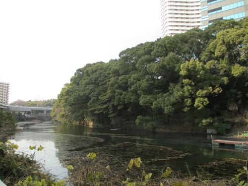 江戸城外堀 003