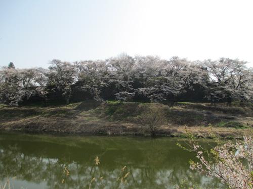 白河小峰城005-1