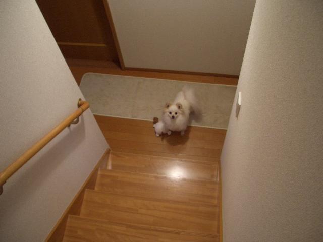 階段下にて