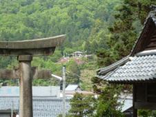 神社から見える秋葉山展望台