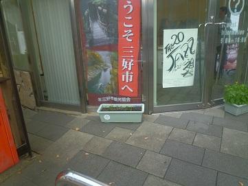 P1020444.jpg