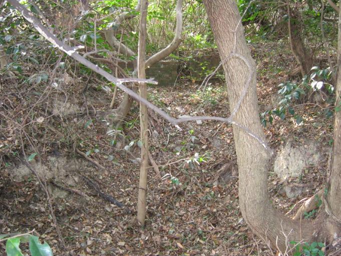 成山第2砲台28cm榴弾砲座 (5)