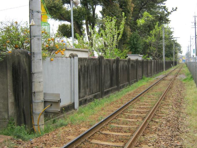 塀、門柱 (2)
