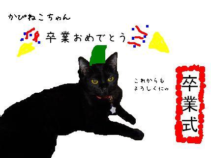 gomachan ペイント