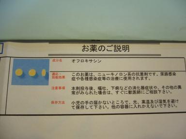 P1020283.jpg
