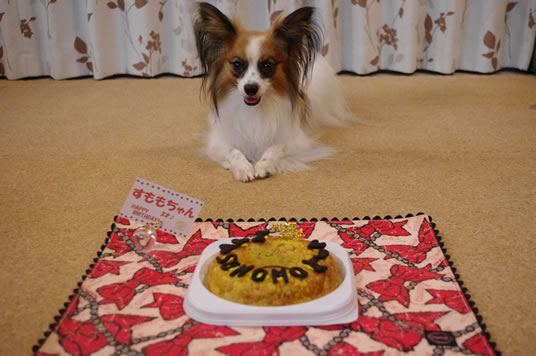 すももとケーキ