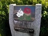 JR前橋駅 市の花 ばら