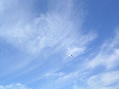 800px-Cirrus_with_aeroplane.jpg