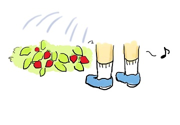 strawberry1J.jpg