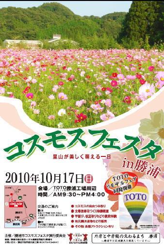勝浦市のイベント「コスモスフェスタ」