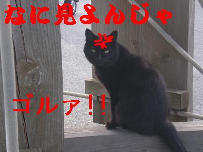100228 (9)