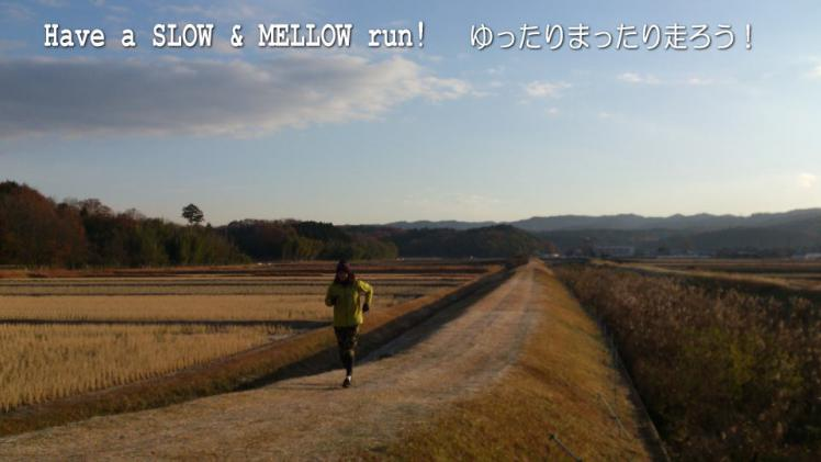 slow_and_mellow_20130325224137.jpg