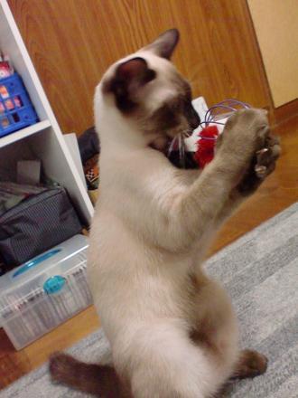 おもちゃ レオ3