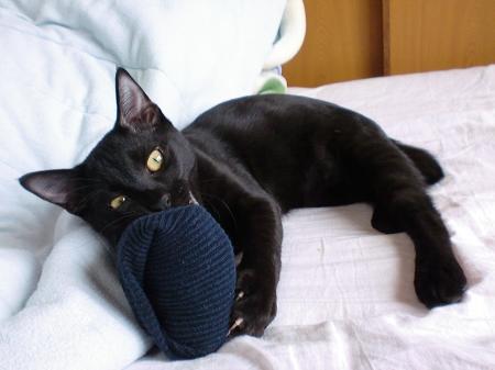 靴下 ロク1