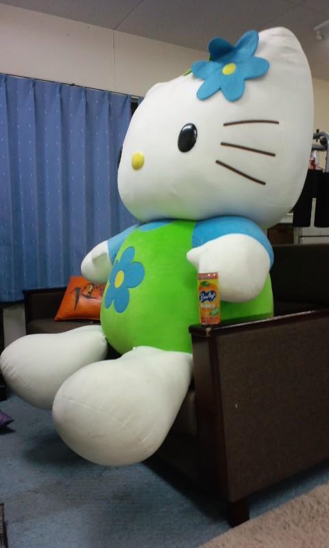 kitty02.jpg