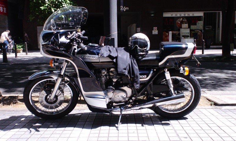 yokohamaensei_goose02.jpg