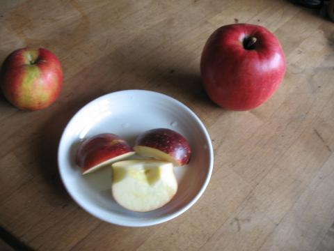 1019 リンゴ