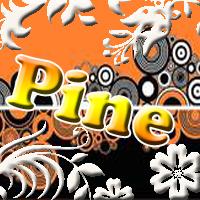 Pine1.jpg