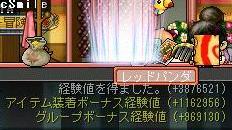 anego_20100425223544.jpg