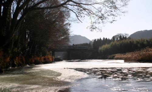 久慈川のシガと水郡線