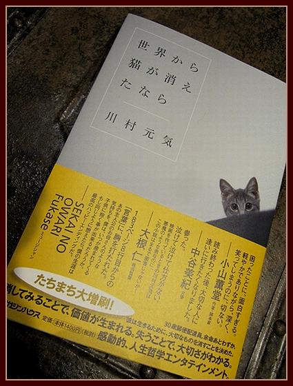 本が好き.jpg