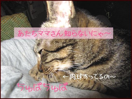 ちゅぱちゅぱ.jpg