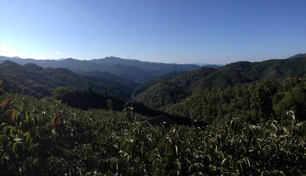 鞆渕の風景-1_R