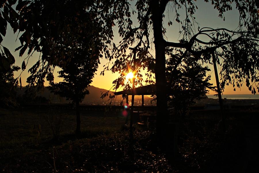 陶芸の村公園