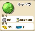 野菜_01_キャベツ