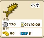 野菜_02_小麦