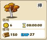 木材_03_樺