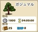 木材_01_ガジュマル