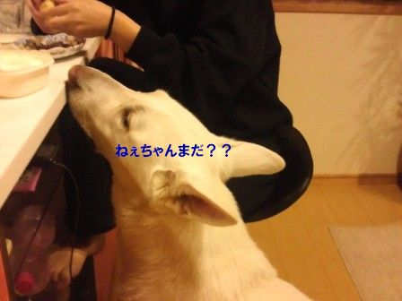 3_20111026125423.jpg