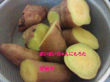 5_20111114142542.jpg