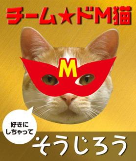 Msouweb.jpg