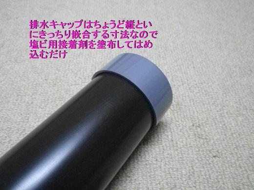 IMGP2651.jpg