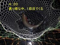 IMGP2792.jpg